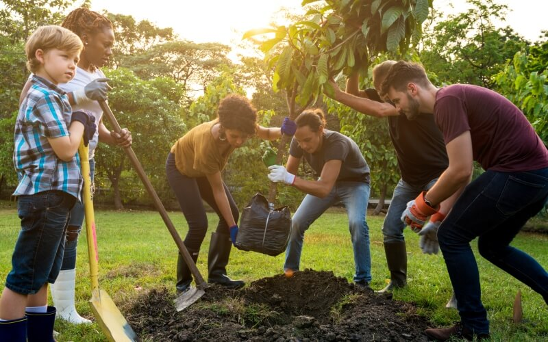 volunteering and planting a tree abroad